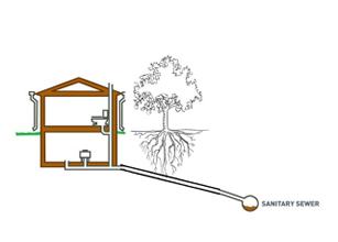 Sewer diagram showing sewage moving into the sanitary sewage system
